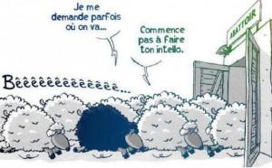 mode mouton