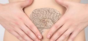 le ventre notre deuxième cerveau, lien entre intestins et troubles psychiques et emotionnels,nettoyer les intestins