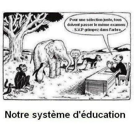 notre système d'éducation castrateur et ultra violent